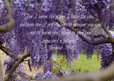 Psalm 108: 2-3